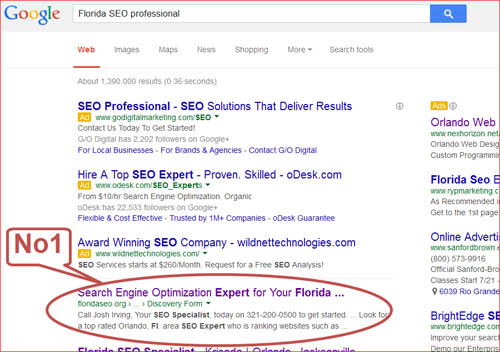 Florida SEO professional-1st page-results
